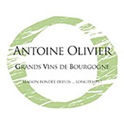 250 Olivier